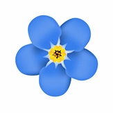 Forget Me Not flower - blue petals, yellow middle