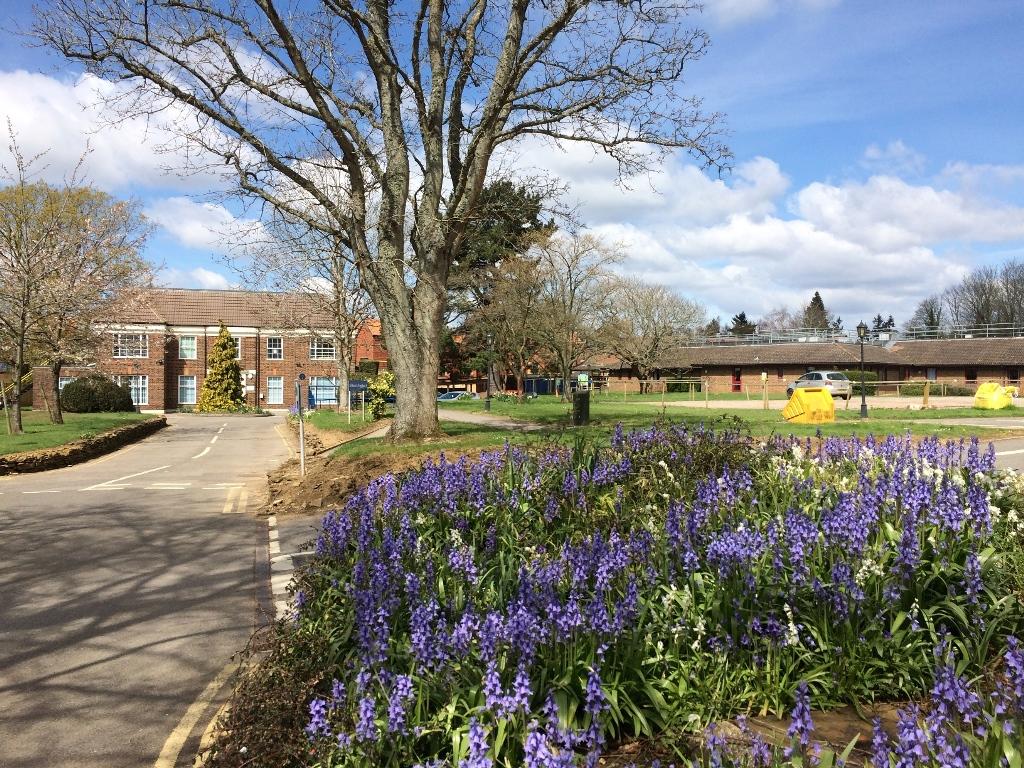 Milford Community Hospital